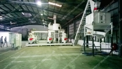 Industrial Scale Wood Pellet Mill Plant for Sale