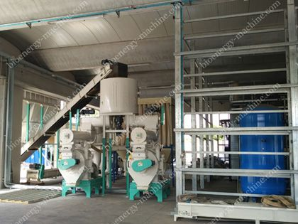 2-3TPH Chestnut Tree Pellet Plant in Italy