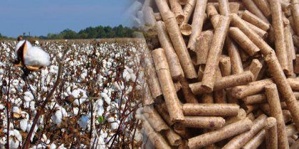 Make Cotton Stalk Pellets to Replace Fossil Fuel