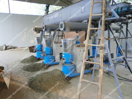 small pellet production line with 6 sets of pellet mills